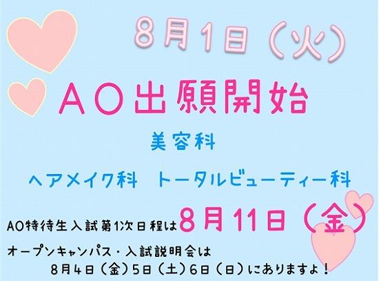 AO81.jpg
