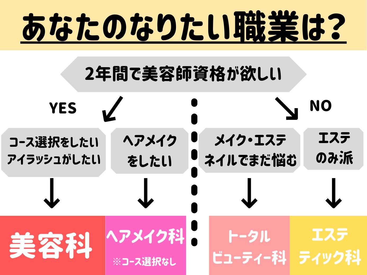 2年向け学科チャート.png