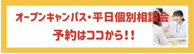 HP記事内使用Ⅱ.jpg