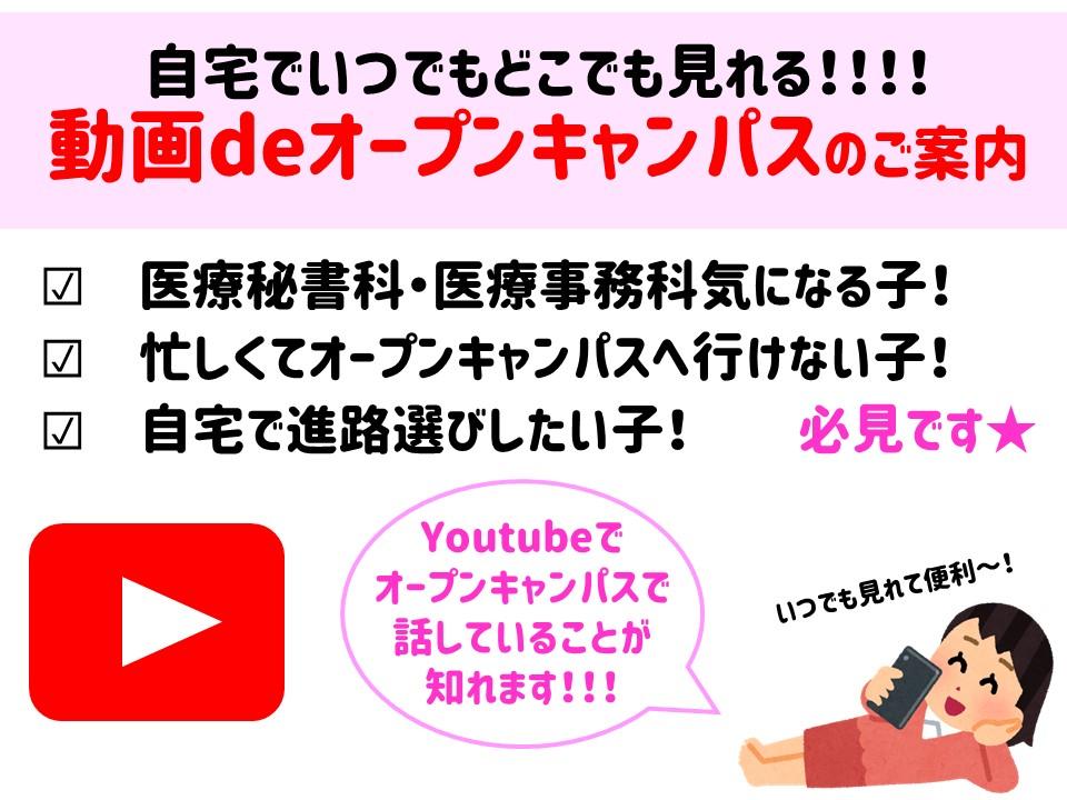 動画1.JPG
