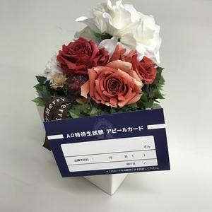 特待生アピールカード.JPG