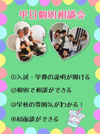 平日個別相談会.jpg