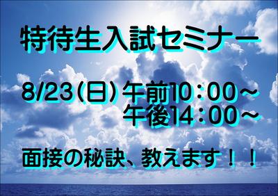 入セミ2.JPGのサムネイル画像のサムネイル画像