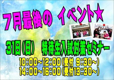 入セミ31日.JPG