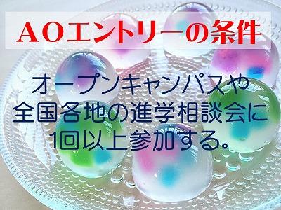 AO特待生入試、続々受験しています!3.jpg