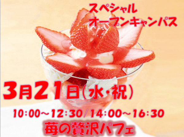 H30体入3月1.PNG