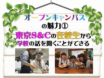 8月の体入告知7.jpg