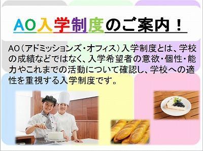 AO入説2.jpg