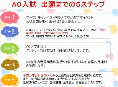 AO入説3.jpg