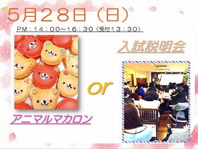 H29 体験入学 5月 11.jpg