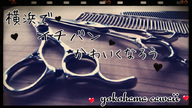 シザー.JPG